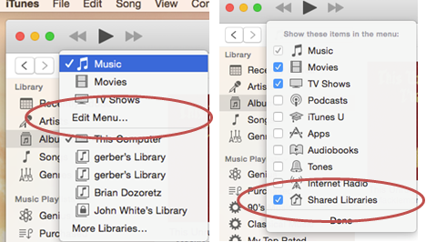 """Click the fourth menu option """"Edit Menu"""". Check the last option """"Shared Libraries"""" is checked so that libraries are viewable in the main drop-down menu."""