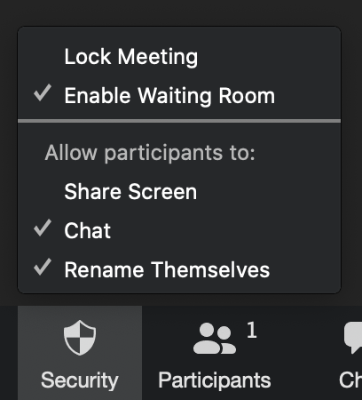 A screenshot of the Zoom security settings.